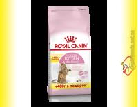 Купить Royal Canin Kitten Sterilised Акция