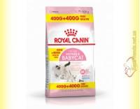 Купить Royal Canin Mother and Babycat Акция