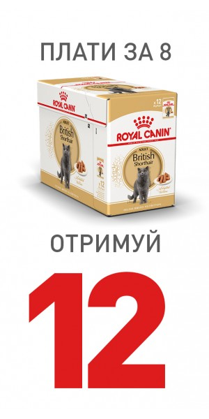 Royal Canin_8+4_dog