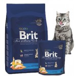 Brit Cat корм для котів