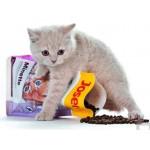 Сухой корм для кошек Josera