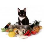 Кошачьи лакомства, витамины