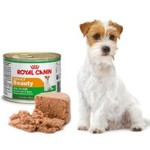 Консервы Royal Canin для собак и щенков