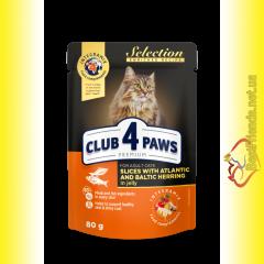 Club 4 Paws Premium Selection Кусочки с Селёдкой и Салакой в желе 80гр