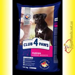 Club 4 Paws Premium Puppies Large Breeds для Щенков крупных пород