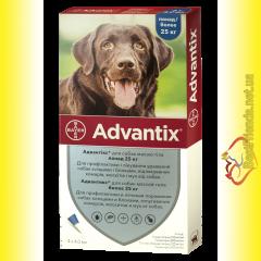 Адвантикс для собак весом более 25кг
