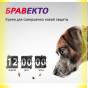Bravecto Таблетки от блох и клещей для собак весом от 10 до 20кг