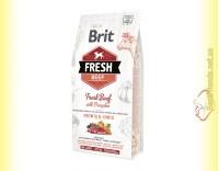 Купить Brit Fresh Beef&Pumpkin Puppy Large Breeds корм для щенков крупных пород с Говядиной и Тыквой