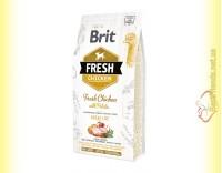 Купить Brit Fresh Chicken&Potato Adult корм для собак с Курицей и Картофелем