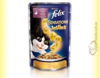 Купити Felix Sensations Jellies с Уткой в желе со шпинатом 100гр