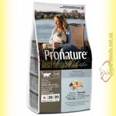 Pronature Holistic с атлантическим лососем и коричневым рисом сухой корм для котов 2,72кг