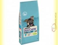 Купить Purina Dog Chow Large Breed Puppy для щенков крупных пород с Индейкой