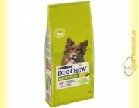 Купить Purina Dog Chow Adult Lamb для взрослых собак с Ягненком и Рисом