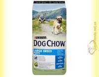 Купить Purina Dog Chow Large Breed Puppy для щенков крупных пород с индейкой 14кг