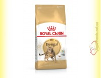 Купить Royal Canin Bengal Adult 2кг