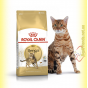 Royal Canin Bengal Adult 400гр