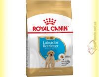 Купити Royal Canin Labrador Retriever Puppy