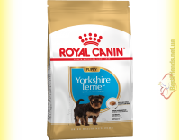 Купить Royal Canin Yorkshire Terrier Puppy