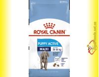 Купить Royal Canin Maxi Puppy Active 4кг