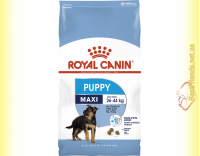 Купить Royal Canin Maxi Puppy