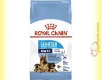 Купить Royal Canin Maxi Starter