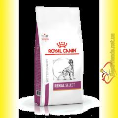 Royal Canin Renal Select  Dog