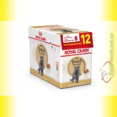 Royal Canin British Shorthair Adult в соусе 12*85гр