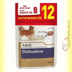 Royal Canin Chihuahua Adult паштет 85гр АКЦИЯ 12 по цене 8!!!
