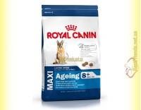 Купить Royal Canin Maxi Ageing 8+ 3кг