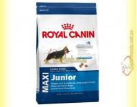 Купить Royal Canin Maxi Junior 4кг