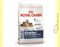 Купить Royal Canin Maxi Starter 4кг