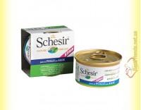 Купить Schesir Chicken Aloe Kitten консервы для котят 85гр