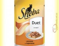 Купить Sheba Duet с уткой и индейкой в соусе 85гр