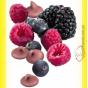 Trixie Mini Drops Дропсы для грызунов, дикие ягоды 75гр