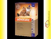 Купить Advocate капли для кошек весом от 4 до 8кг
