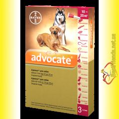Advocate Капли для собак весом от 10 до 25кг