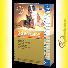 Advocate Капли для собак весом от 25 до 40кг