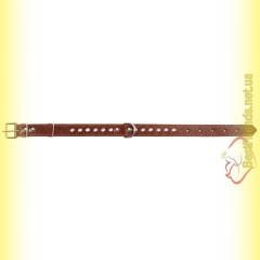 Ошейник кожаный с украшением 12мм BeFore