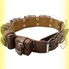 Ошейник кожаный с утяжелителями №2, 6*400гр Collar