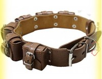 Купить Ошейник кожаный с утяжелителями №3, 6*400гр Collar