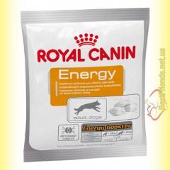 Royal Canin Energy Лакомство для дополнительной энергии активных собак 50гр
