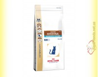 Купить Royal Canin Gastro Intestinal Moderate Calorie Cat