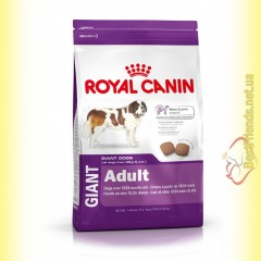 Royal Canin Giant Adult 4кг