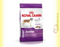 Купить Royal Canin Giant Junior 4кг