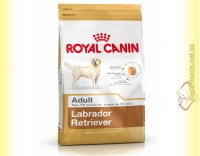 Купить Royal Canin Labrador Retriever Adult 12кг