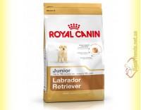 Купить Royal Canin Labrador Retriever Junior 3кг