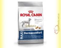 Купить Royal Canin Maxi Dermacomfort 3кг